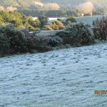 Frost13